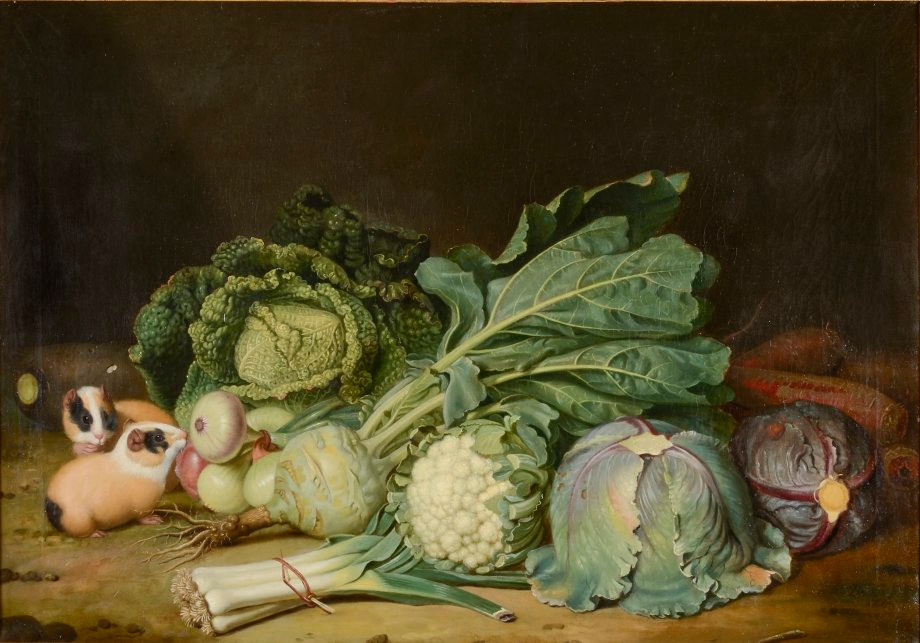 Two Guinea Pigs with Cabbages and Onions