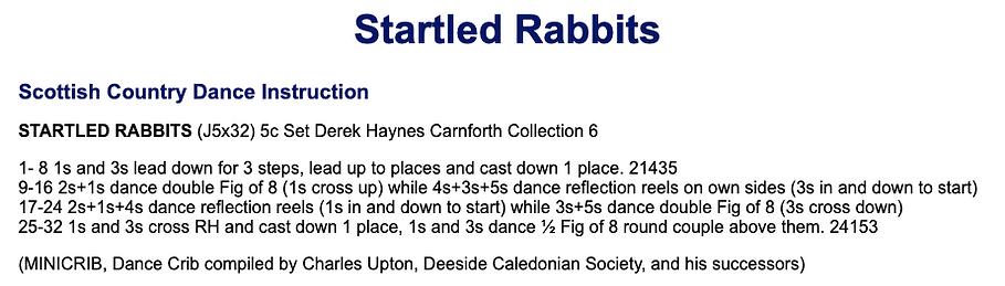 Startled Rabbits