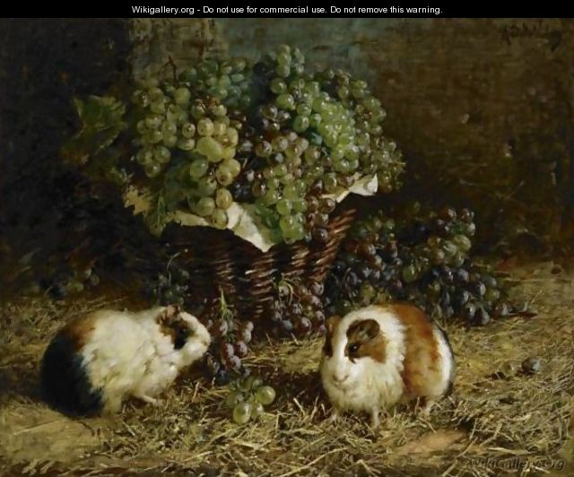 Guinea Pigs and a Basket of Grapes