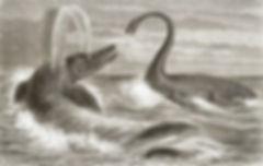 Loch Ness Monster Reel