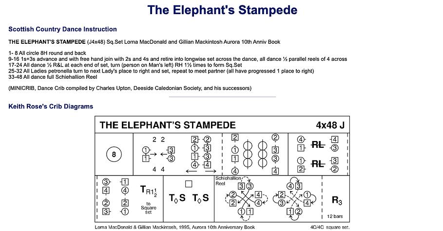 Elephant's Stampede