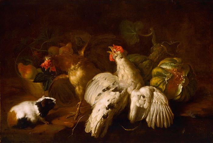 Natura morta con frutta, cesto, galli e porcellino d'India