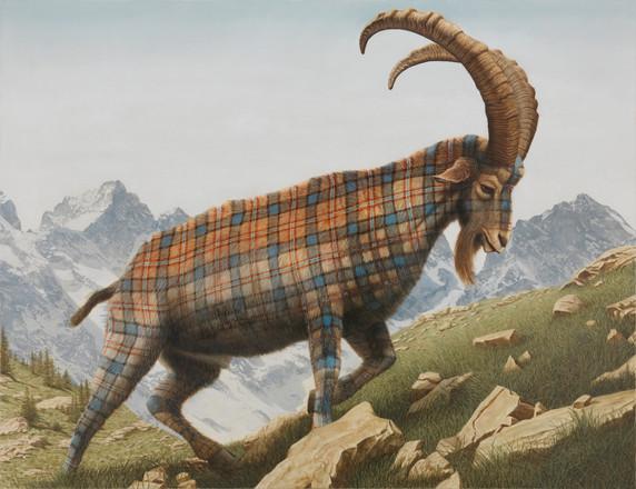 Tartan Goat (Ibex)
