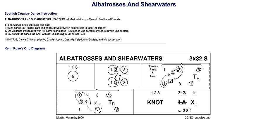Albatrosses and Shearwaters
