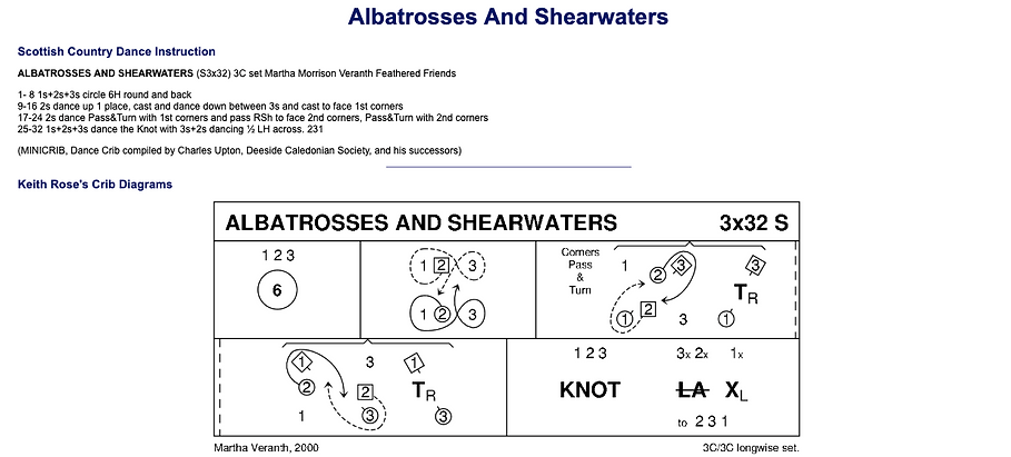 Albatrosses and Shearwaters