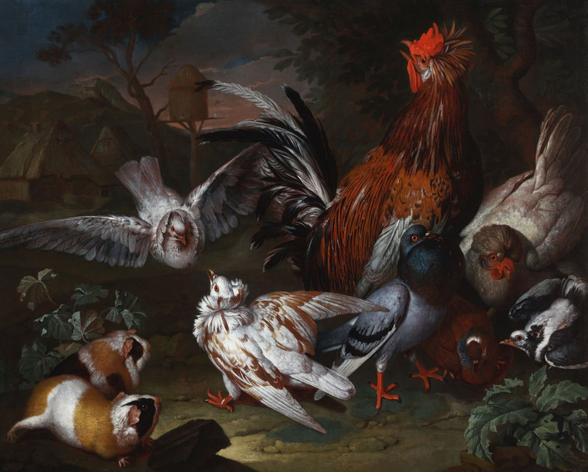 Barnyard Scene with a Cock, Pigeons and Guinea Pigs