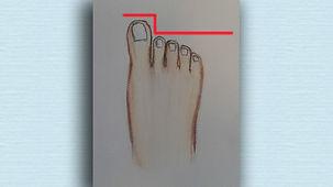 The German Foot