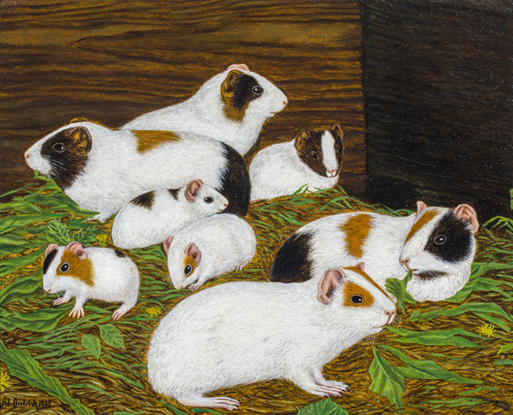 Eight Guinea Pigs