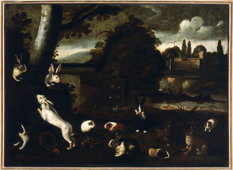 Hares, Guinea Pigs, Hedgehog