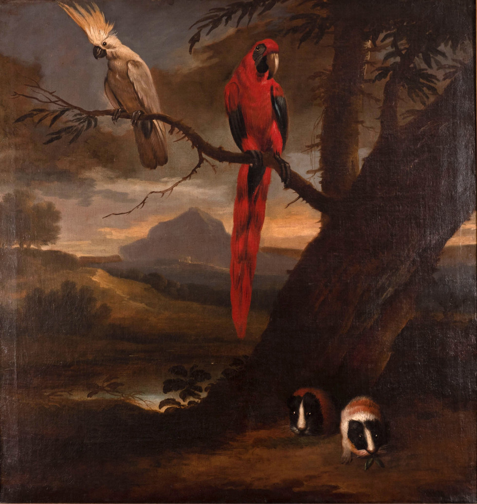A Macaw, a Cockatoo and Guinea Pigs in a Landscape