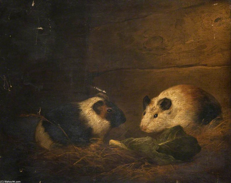 George+Morland-Study+Of+Guinea+Pigs