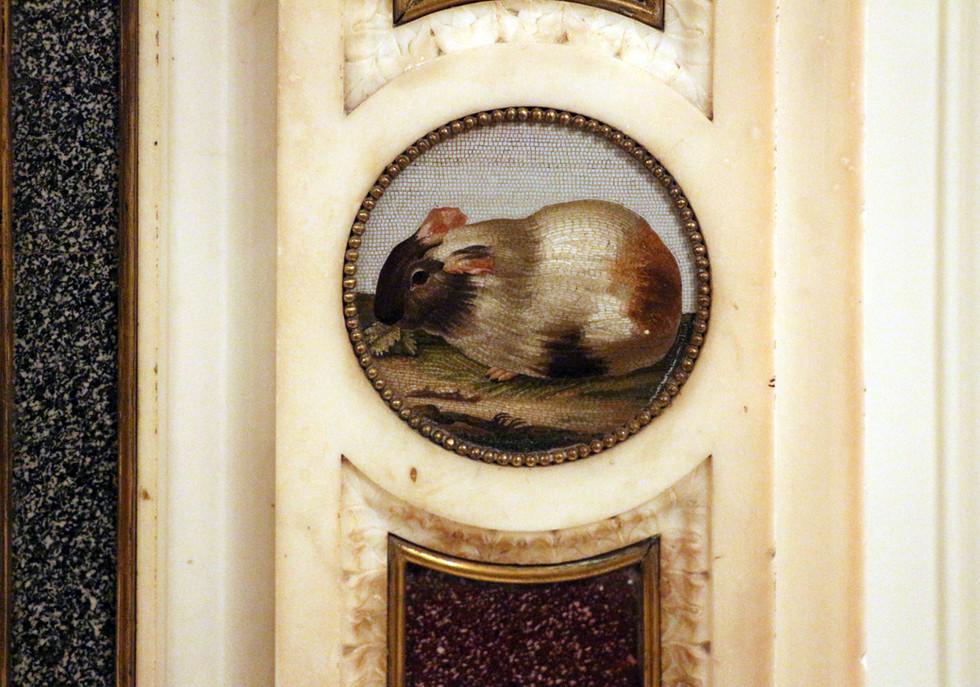 Rafaelli Fireplace Insert, Micromosaic of Guinea Pig