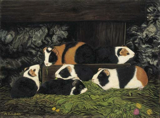 Six Guinea Pigs in a Stall
