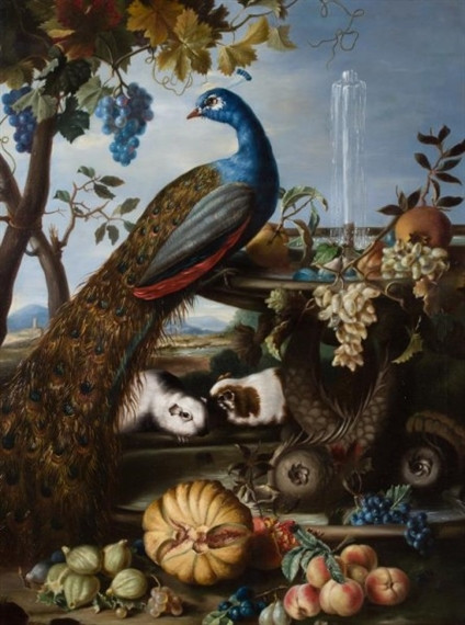 Peacock, Fountain, Guinea Pigs and Fruit