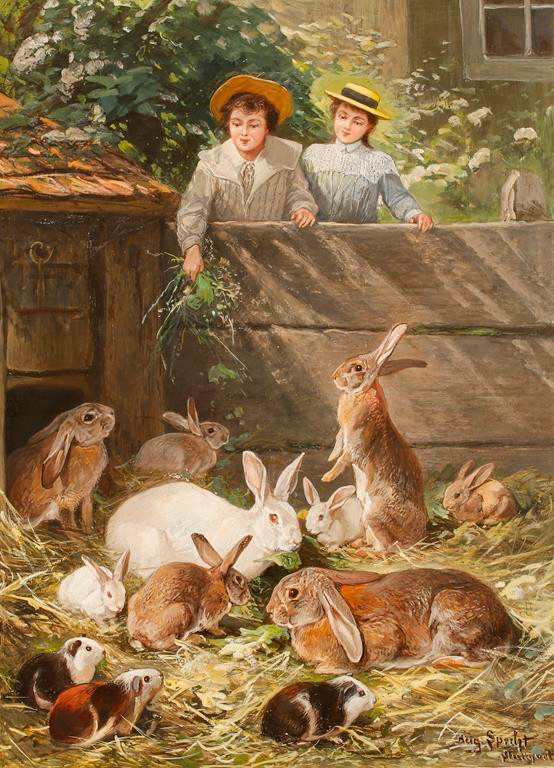 Rabbit Aviary in a Zoo - Young gentleman and lady feeding rabbits and guinea pigs on a farm