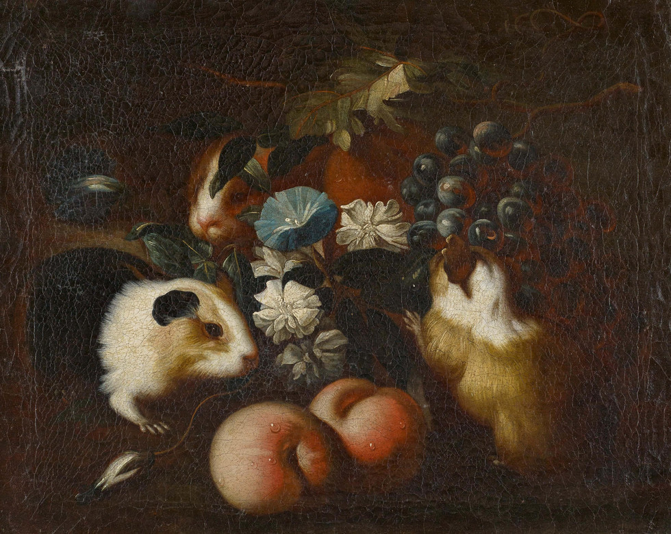 Still Life with Guinea Pigs