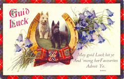 newyearpostcard