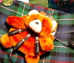 Teddy Bear Taxidermy