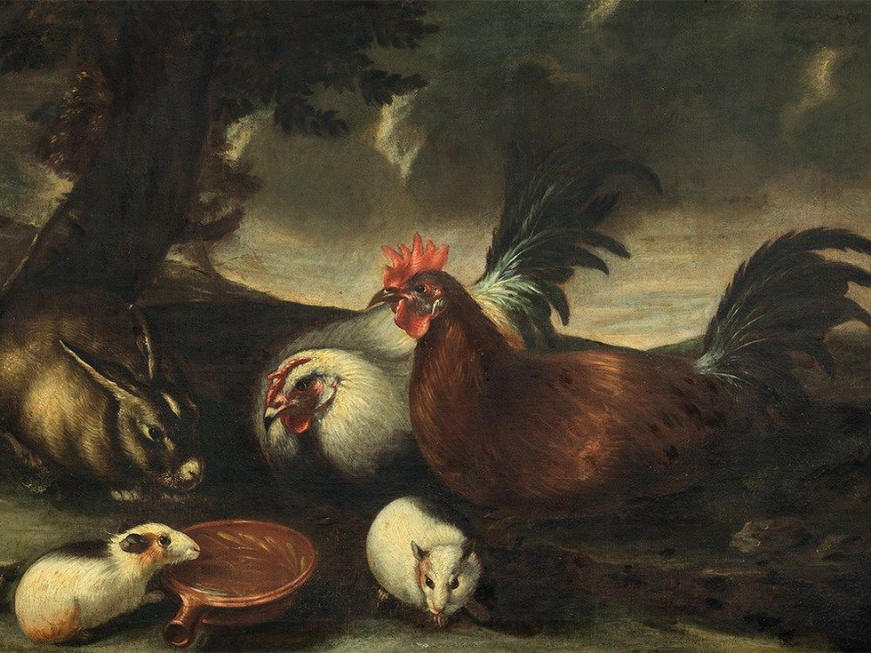 Decorative Fowl