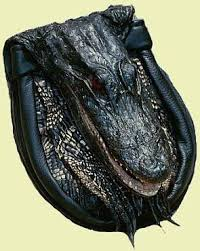 Gator or Croc Appeal - Smile!