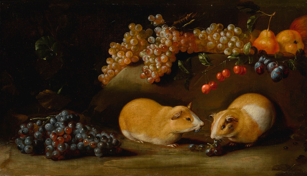 Still life of Grapes and Other Fruit with Two Guinea Pigs