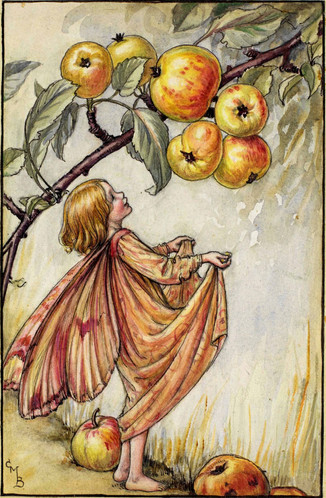 """""""Crab-apples, Crab-apples, out in the wood, Little and bitter, yet little and good! The apples in orchards, so rosy and fine, Are children of wild little apples like mine. The branches are laden, and droop to the ground;  The fairy-fruit falls in a circle around; Now all you good children, come gather them up: They'll make you sweet jelly to spread when you sup.  One little apple I'll catch for myself; I'll stew it, and strain it, to store on a shelf In four or five acorn-cups, locked with a key In a cupboard of mine at the root of the tree."""" ~ Cicely Mary Barker, The Crab-apple Fairy"""