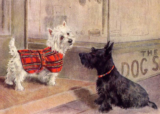 Westie & Scottie On the Town