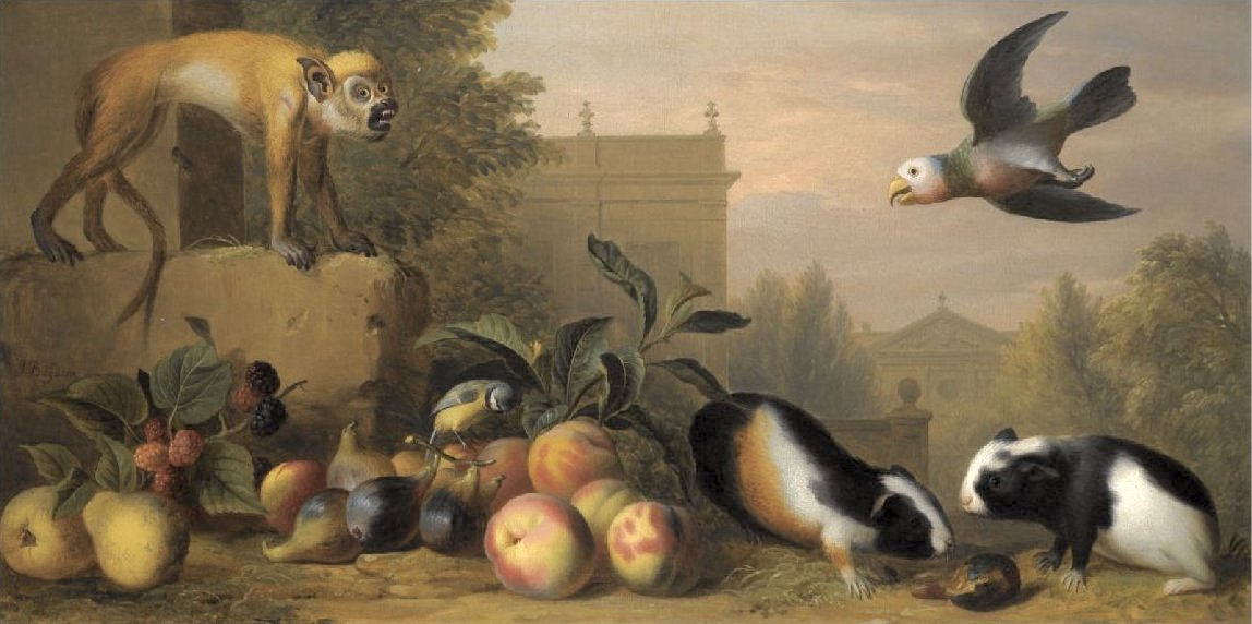 'Capuchin_squirrel_monkey,_two_guinea_pigs,_a_blue_tit_and_an_Amazon_St._Vincent_parrot_with_Peaches