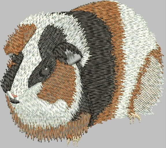 Embroidered Cavy