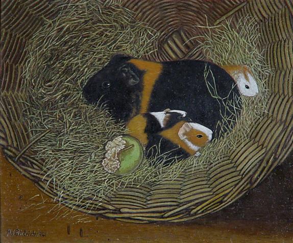 Guinea Pigs in a Basket