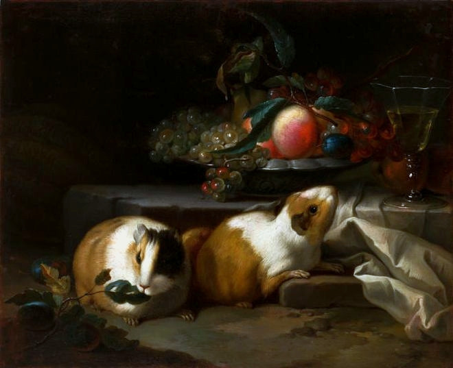 Still Life with 2 Guinea Pigs and peach, grapes