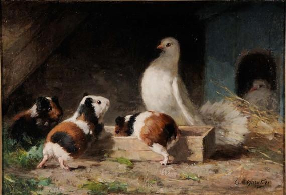 Guinea Pigs in the Dovecote