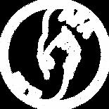LogoSui blanc.png