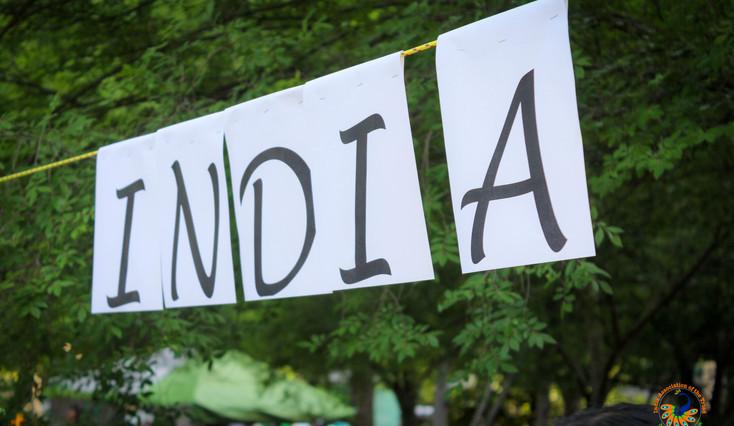 IAT-2019-IndiaFest-1731.jpg