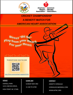 CricketPoster2015