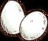 有機雞蛋.png