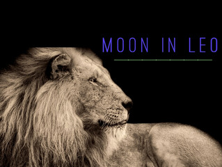 Recharge with the Leo Moon