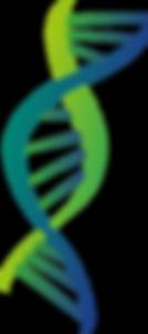 Logo_Genética_editado.png