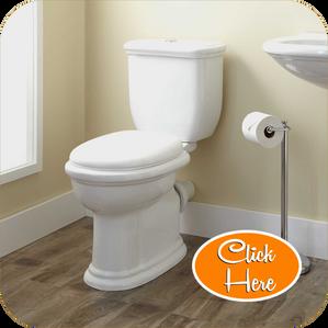 toilet replacement las vegas