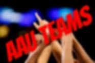 Link to Hoop Life AAU teams