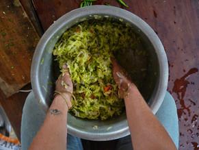 Sauerkraut Made Easy