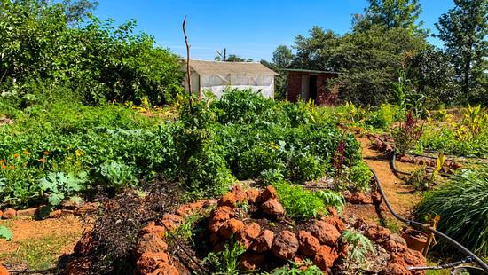 TOG farm edited.jpg