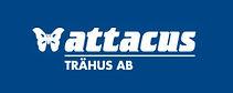 attacus-trahus.jpg