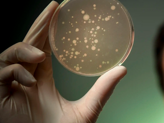 WELCOME TO THE MICROBIOMIC AGE