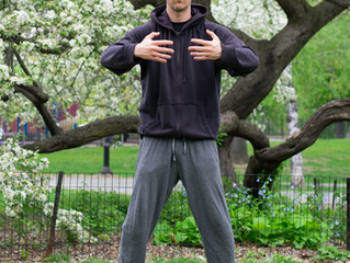 100 Days of Qi Gong