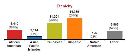 Valencia Student Ethnicity Spring 2017
