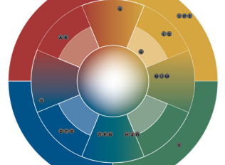 Success is colorful! Why we decided to work with the e-stimate® personality profiles…