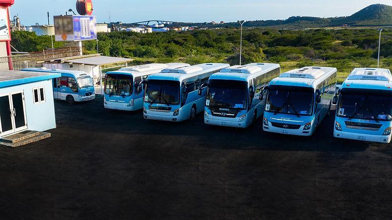 Fiesta Tours Fleet