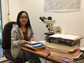 Internship of cambodian pathologists-in-training in germany, sponsored by iPath