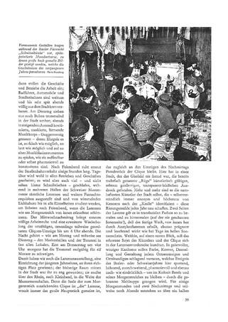 1956 MERIAN Seite 39